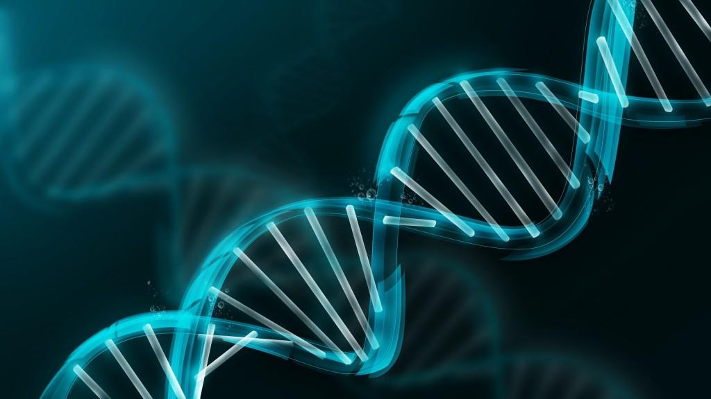 DNA - Struttura a doppia elica